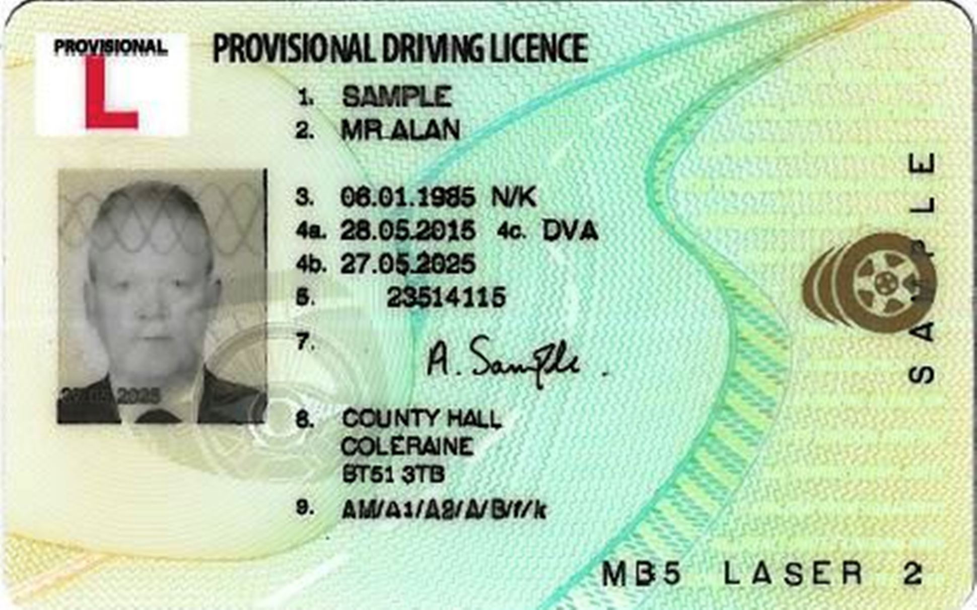 Provisonal driving license